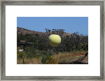San Diego Zoo - 1212131 Framed Print by DC Photographer