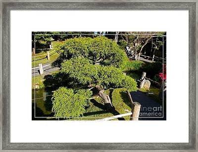 San Francisco Golden Gate Park Japanese Tea Garden 3 Framed Print by Robert Santuci