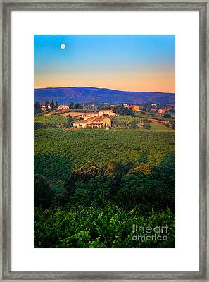San Gimignano Vineyards Framed Print by Inge Johnsson