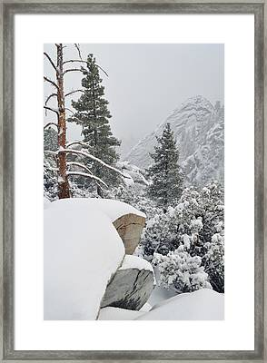Framed Print featuring the photograph San Jacinto Winter Wilderness by Kyle Hanson