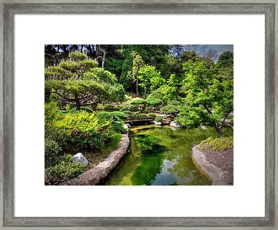 San Marino - Huntington Botanical Gardens 004 Framed Print by Lance Vaughn