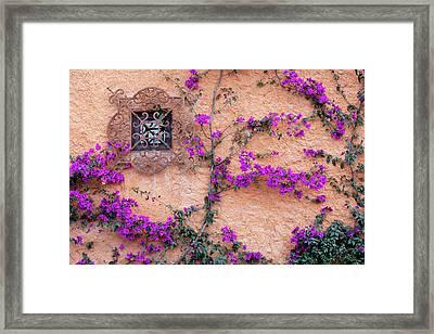 San Miguel De Allende, Mexico Framed Print