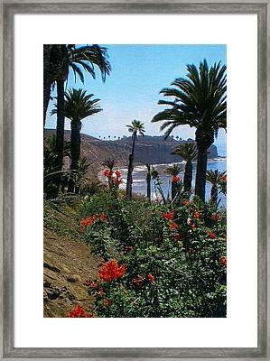 San Pedro Coast Line Framed Print