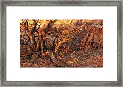 San Rafael Canyon Framed Print by Leland D Howard