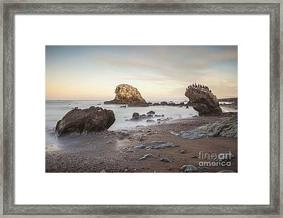 San Simeon State Beach California Framed Print by Colin and Linda McKie