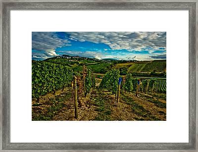 Sancerre Vineyards Framed Print by Oleg Koryagin