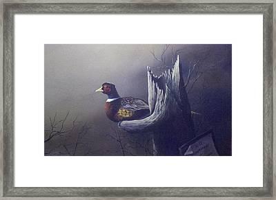 Sanctuary  Framed Print by Dan Parsons