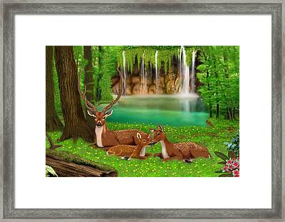 Sanctuary Framed Print by Glenn Holbrook