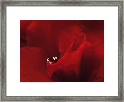 Sanctuary Framed Print by Schwartz