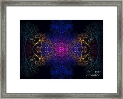 Sanctuary Framed Print by Tim Gainey