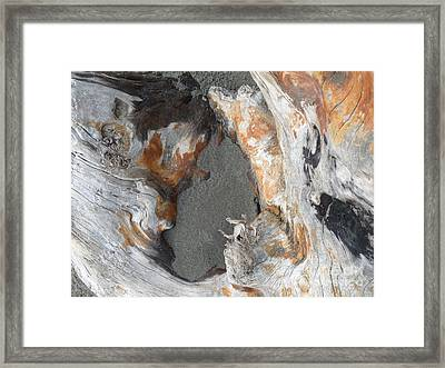 Sand And A Rusty Log Framed Print