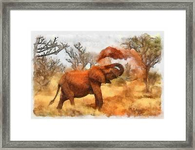 Sand Bath Framed Print