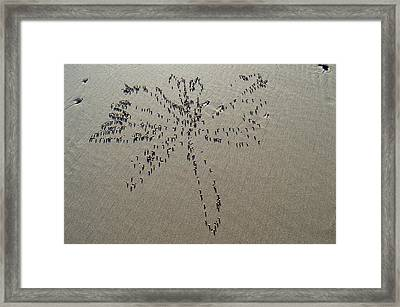 Natures Art - Dragonfly Sand Pattern Framed Print