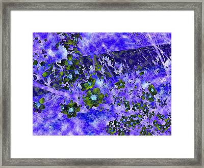 Sand Cherry Color Difference Cloud Framed Print