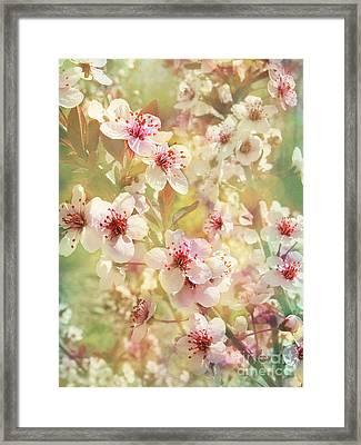 Sand Cherry Flourish Framed Print by Kathi Mirto
