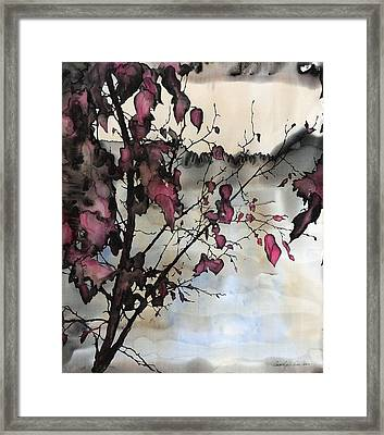 Sand Creek Framed Print by Carolyn Doe