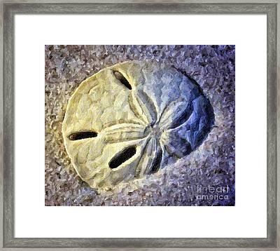 Sand Dollar 1 Framed Print by Walt Foegelle