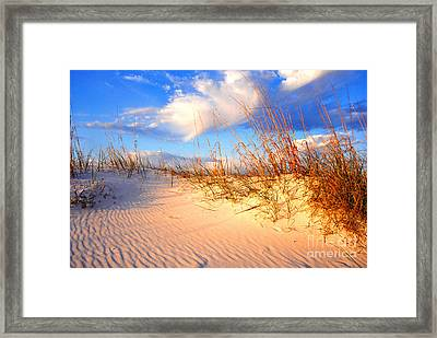 Sand Dune And Sea Oats At Sunset Framed Print by Thomas R Fletcher