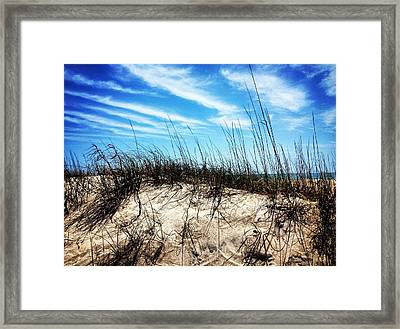 Sand Dune At Alantic Beach Framed Print by Joan Meyland