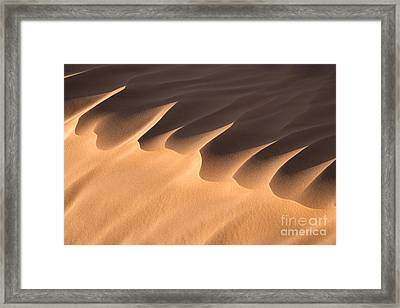 Sand Dune Detail Framed Print by Delphimages Photo Creations