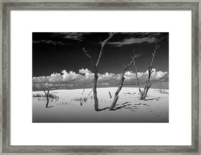 Sand Dune Meets The Sky Framed Print by Randall Nyhof