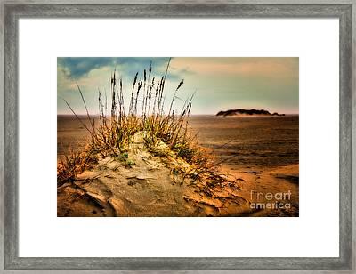 Sand Dune On Ocracoke - Outer Banks I Framed Print by Dan Carmichael