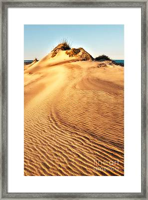 Sand Dune Textures - Outer Banks I Framed Print by Dan Carmichael