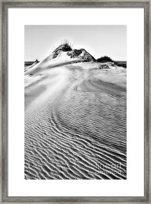 Sand Dune Textures - Outer Banks II Framed Print by Dan Carmichael