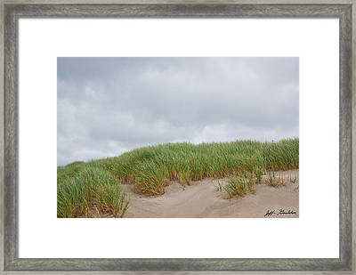 Sand Dunes And Grass Framed Print