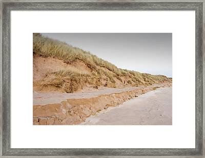 Sand Dunes At Beadnell Framed Print by Ashley Cooper