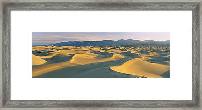 Sand Dunes In A Desert, Grapevine Framed Print by Panoramic Images