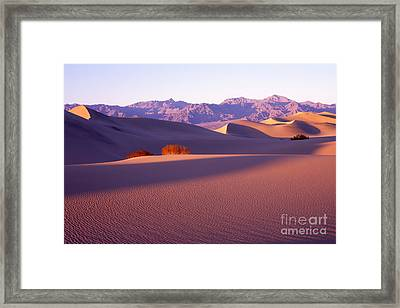 Sand Dunes In Death Valley Framed Print