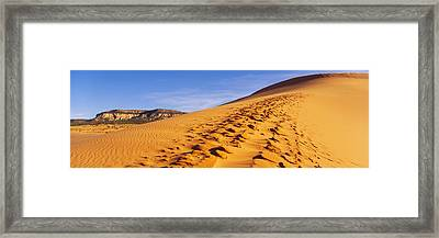 Sand Dunes In The Desert, Coral Pink Framed Print by Panoramic Images