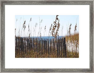 Framed Print featuring the photograph Sand Dunes by Michele Kaiser