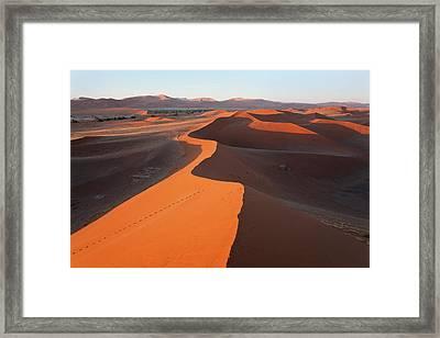 Sand Dunes, Namib Naukluft National Framed Print by Peter Adams