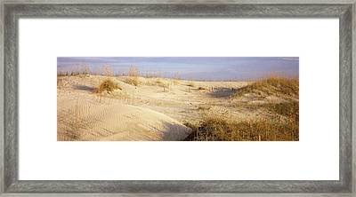 Sand Dunes On The Beach, Anastasia Framed Print by Panoramic Images