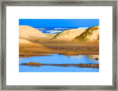 Sand Dunes On The Gulf Of Mexico Framed Print by Louise Heusinkveld