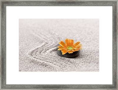 Sand Garden Framed Print by Delphimages Photo Creations