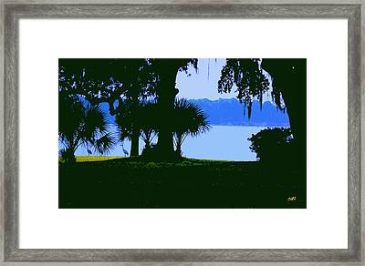Sand Hill Cranes On Shore Framed Print