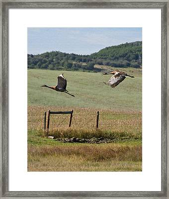 Sand Hill Lift Off Framed Print