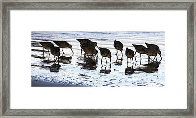 Sand Pipers Reflected Framed Print