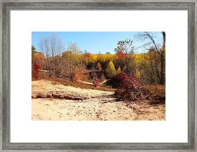 Sand Pit Framed Print by Scott Hovind