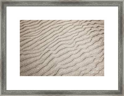 Sand Ripples Natural Abstract Framed Print by Elena Elisseeva