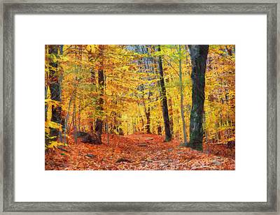 Sand Run Metro Park Framed Print