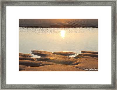 Framed Print featuring the photograph Sand Shine by Robert Banach