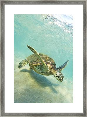 Sand Surfing Framed Print by James Roemmling
