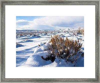 Sand Wash Basin In The Winter Framed Print