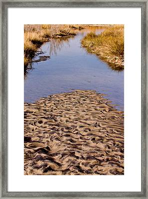 Framed Print featuring the photograph Sandform At Sand Hook by Gary Slawsky