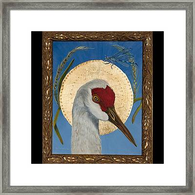 Sandhill And Damsel Framed Print by Amy Reisland-Speer