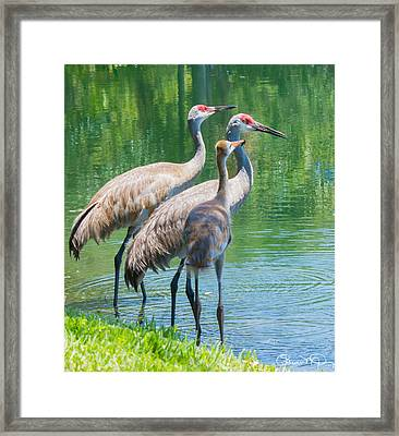 Mom Look What I Caught Framed Print